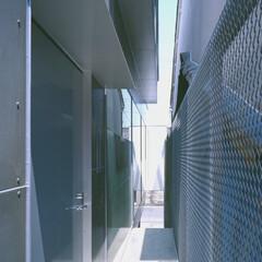 名古屋/フレキシブルボード 玄関へのアプローチ。