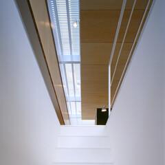 名古屋/ファインフロア/トップライト バスルームから主室への階段とその上の透過…