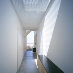 豊川市/フロストガラス/エキスパンドメタル トップライトからの光と正面ガラス。