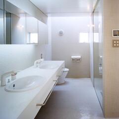 豊川市/モザイクタイル/トップライト  ダブルベイシンとトイレの上のトップライ…