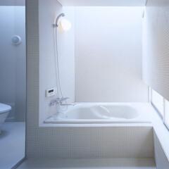 豊川市/モザイクタイル/トップライト バスルームとトップライト、中庭を臨む地窓。