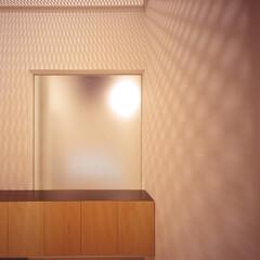豊川市/フロストガラス 下足箱とフロスとガラス。