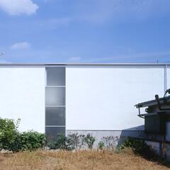 豊川市/フロストガラス シンプルモダン、キュービックな外観。
