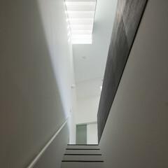 亀戸/狭小/三角形/パンチングメタル 上部のパンチングメタルの階段から光が差す。
