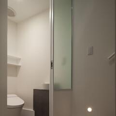 亀戸/狭小/三角形/フロストガラス 変形極小トイレ。
