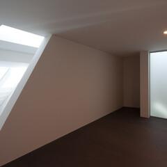 亀戸/狭小/三角形/スキップフロア/パンチングメタル/ハイサイドライト 右フロストガラスの奥はトイレ上部、様々な…(1枚目)