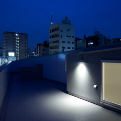 亀戸/狭小/三角形/スカイツリー/屋上 スカイツリーが見える。(1枚目)