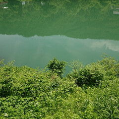 令和元年フォト投稿キャンペーン/風景 水が綺麗(*´∀`)(1枚目)