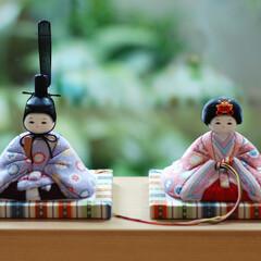 ふらここ/人形/ひなまつり/雛人形/赤ちゃん ふらここのお人形は小さくて可愛く、 そっ…