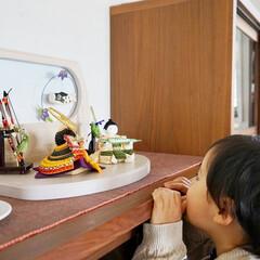 ふらここ/五月人形/省スペース/子供の日/端午の節句/節句/... 〔ふらここ〕の兜は、「お部屋に置くにはち…