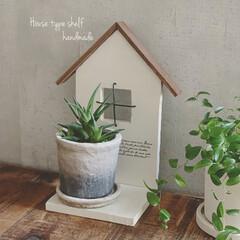 グリーン/ペンキ塗り/木工/ガーデンシェルフ/雑貨/ハンドメイド/... 端材でガーデンシェルフを作りました 窓は…