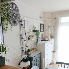 海外インテリアに憧れる/北欧インテリア/DIY/チェスト/1LDK/賃貸インテリア/... キッチンからの大好きな眺め❗