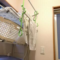 便利/ロングフック/脱衣所/室内干し/物干し竿/洗濯/... アイデア投稿《30こ目》 緑色のロングフ…