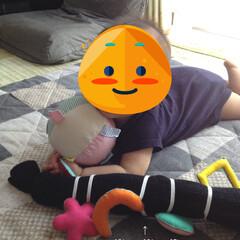 にぎにぎ/ガシャガシャ/赤ちゃん/フェルト/ハンドメイド/おもちゃ 使わなくなったレッグウォーマーの中にビニ…