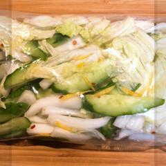 混ぜるだけ/きゅうり/白菜/簡単/つけもの/柚子 柚子を頂いたので、、、 ジップロックへ …