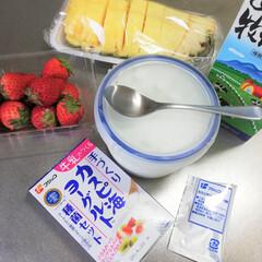 カスピ海ヨーグルト/いちご/パイナップル/節約/安くできる/美味しい/... 手作りヨーグルト。カスピ海ヨーグルトでい…