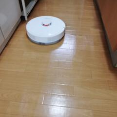 お掃除ロボット/ロボロック/ロボロック S6 ホワイト/腰痛にならない/部屋がピカピカ/時短/... わが家のお掃除ロボット「ロボロック S6…
