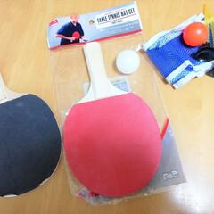 子どもと遊べる/卓球/ダイソー/100均/ラケット/ネット/... ダイソーで買った卓球グッズ。ラケットとネ…
