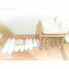 玄関収納/玄関/靴/靴収納/簡単/ラク家事/... 🌼夏の靴🌼 グラデーションで並べるのがお…