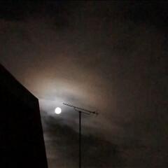 満月の夜/令和の一枚/風景 昨夜の満月  アンテナが邪魔ですね💦  …