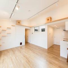 LIMIAな暮らし/建築/インテリア/住まい/生活の知恵/キッチン/... 白いタイルのキッチンを隠れた場所に キッ…