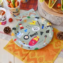 サンナップ/ロディ/紙ナプキン/アウトドア/テーブルコーディネート/自然/... 新商品のロディの紙皿はアンドスケープシリ…