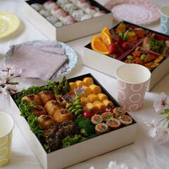 サンナップ/紙皿/ピクニック/お家カフェ/女子会 サンナップの簡易食器はお洒落で可愛く、さ…