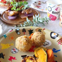 サンナップ/紙皿/ロディ/コラボ商品/BBQ/ピクニック/... ロディの可愛いお皿なら、 苦手なお野菜も…(1枚目)