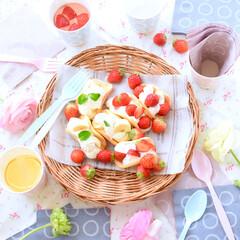 サンナップ/紙皿/お家カフェ/日本製/ホームパーティー ホームパーティーを可愛い食器で盛り上げま…
