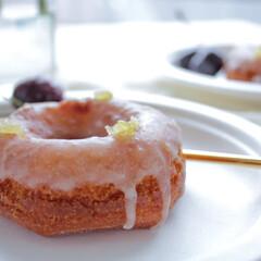サンナップ/紙皿/朝食/シンプルな暮らし/ドーナッツ サンナップのプレートはいつもの食卓を簡単…