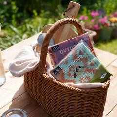 サンナップ/ピクニック/アウトドア/キャンプ/紙皿/ホームパーティー この夏のキャンプやピクニックに持っていき…
