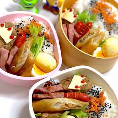ご飯/お弁当/雑貨/わたしのごはん 今日のお弁当🍴 味玉(カレー出汁) 春巻…