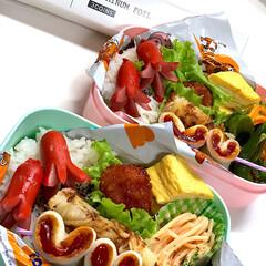 お弁当/ダイソー 今日のお弁当🍱 ✴︎だし巻き卵 ✴︎タコ…(1枚目)