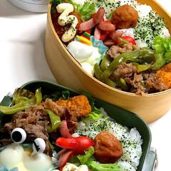 おうちご飯/お気に入りの食器/こだわりのテーブル 今日の仕事組弁当🍱 久々にうずら卵、剥き…