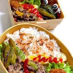 お弁当/ランチ/簡単/スタミナ丼/夏に向けて/スタミナご飯/... 今日は明日からテストが始まるので三女短縮…
