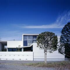 温熱環境/開放感/温度差のない家/自分らしく暮らす/ギャラリーリビング アートと暮らす ギャラリーハウス 美術教…