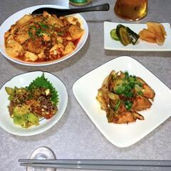 作り置き/晩酌ご飯/晩ごはん/おうちごはん/節約/簡単/... 晩酌ご飯です。 麻婆豆腐。みそ漬け鶏胸肉…