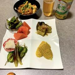 晩酌ご飯/糖質控えめ/ダイエット食/とうもろこし/枝豆/晩ご飯/... 晩酌ご飯です。 麻婆豆腐。枝豆の醤油漬け…