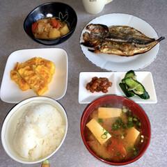 お昼ごはん/作り置き/おうちごはん/ランチ/簡単/暮らし/... お昼ご飯です。 鯵の干物。肉じゃが。卵焼…