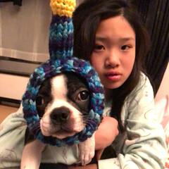 スヌード 編み物/宇宙犬/鍵編み/ブサカワ犬/わたしの手作り 宇宙犬スヌード を編んでみました👽 突起…