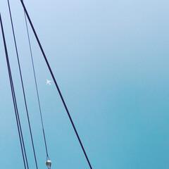 飛行機/空/電線/おでかけワンショット 電線の隙間