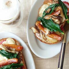 サタルニア チボリ オーバルプレート 23cm(皿)を使ったクチコミ「朝ごはん 🔸春野菜たっぷりピザ  自家製…」