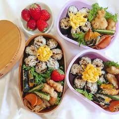 OBENTO/曲げわっぱ/海苔巻き/手作り弁当/お弁当/花弁当/... お花見弁当   娘たちと花弁当持って一緒…
