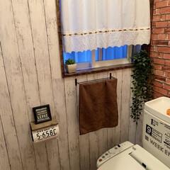 トイレリフォーム/最近買った100均グッズ/ダイソー/収納/雑貨 トイレの壁紙もDAISOの壁紙で約13枚…
