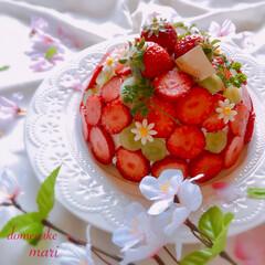 手作りケーキ/ドームケーキ/お菓子作り/グルメ/フード/スイーツ/... 家族へのホワイトデーにドームケーキ作りま…
