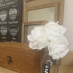 暮らし コーヒーフィルターで、バラもどき‥。 空…(1枚目)