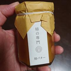 鹿/姪オススメ柿バター/大仏プリン/奈良観光/奈良公園/奈良スイーツ/... 奈良旅行 (8枚目)