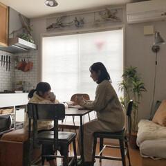 住まい/寒さ対策/窓/断熱/ハニカムスクリーン/ハニカムサーモスクリーン/... 寒さ対策で窓にハニカムサーモスクリーンを…(1枚目)