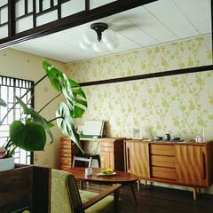 壁紙屋本舗/UR賃貸/格子窓 上部の襖鴨居の枠を利用して、ポリカーボネ…