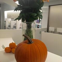 ハロウィン/かぼちゃ 受付にあった巨大カボチャ